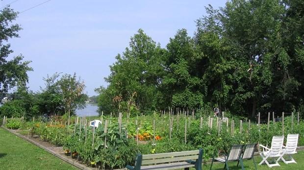 Conf rence sur l entretien du jardin pincourt for Annonce entretien jardin